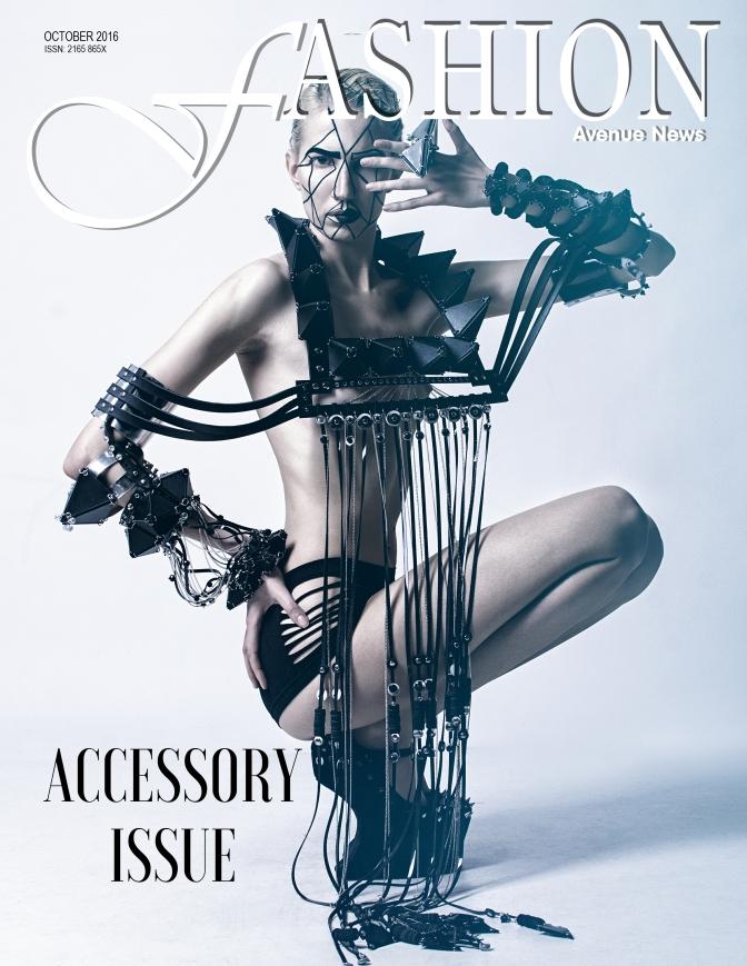 fan-oct-2016-intl-accessory-issue